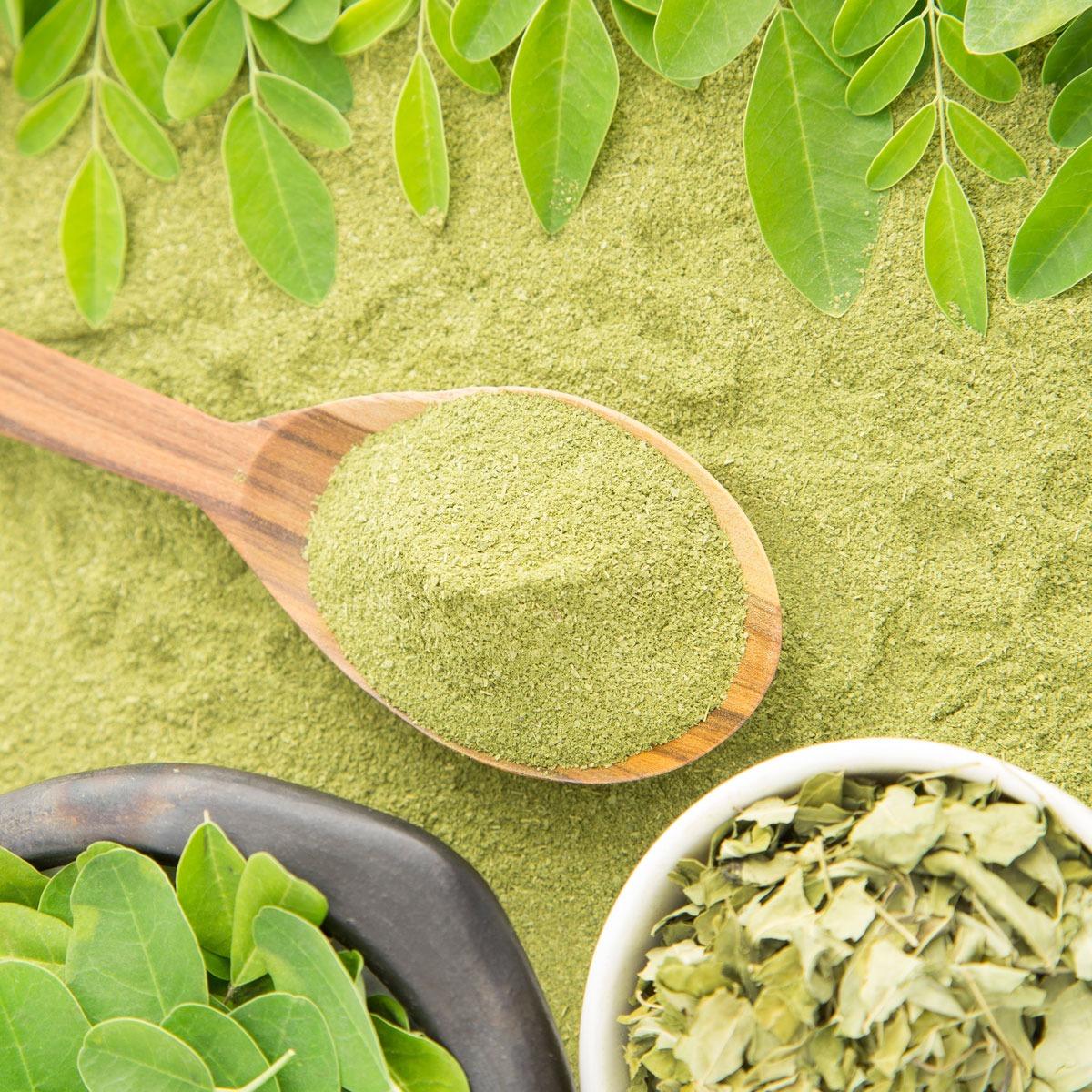 Moringa: 5 poderosos beneficios para tu salud