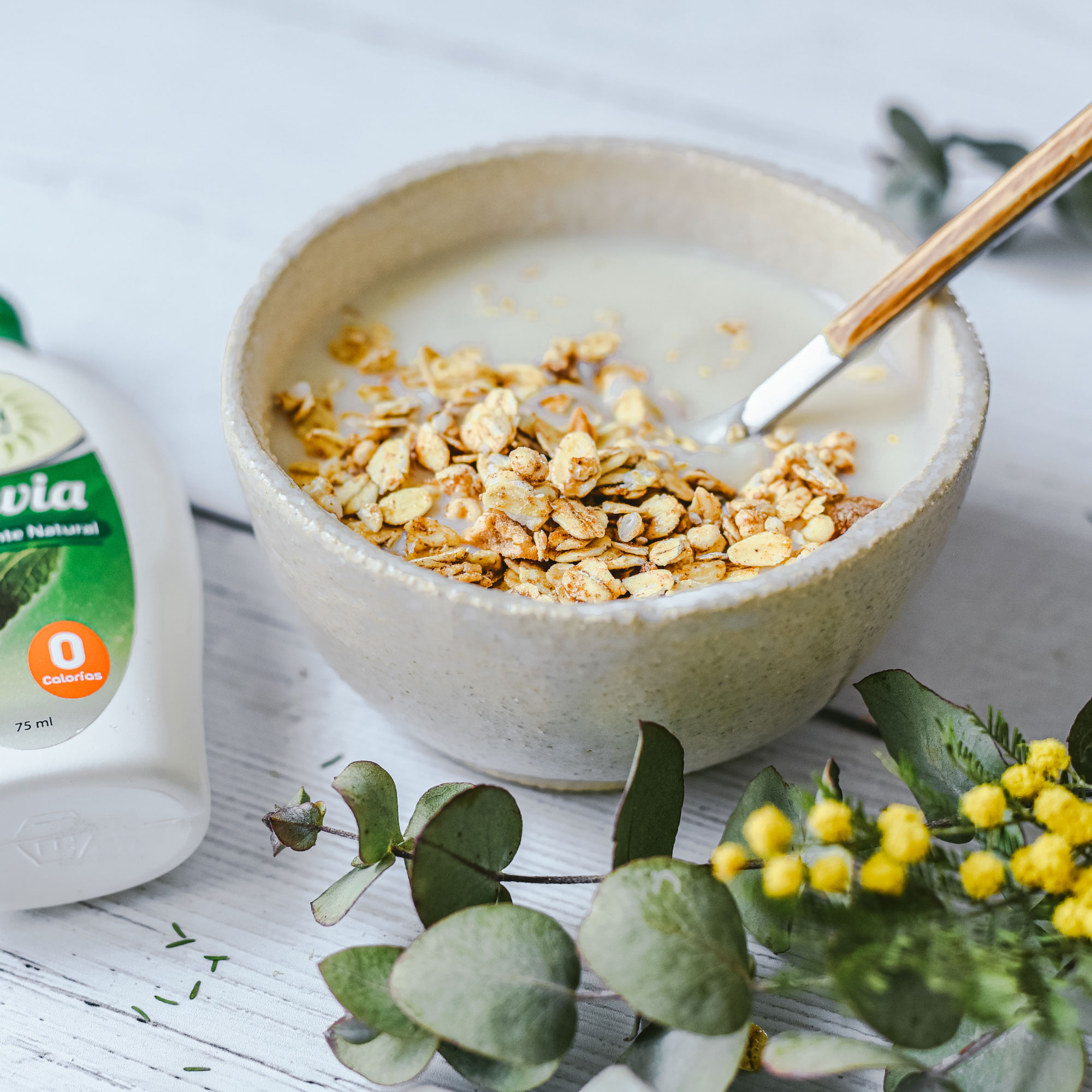 Yogur de coco casero con stevia