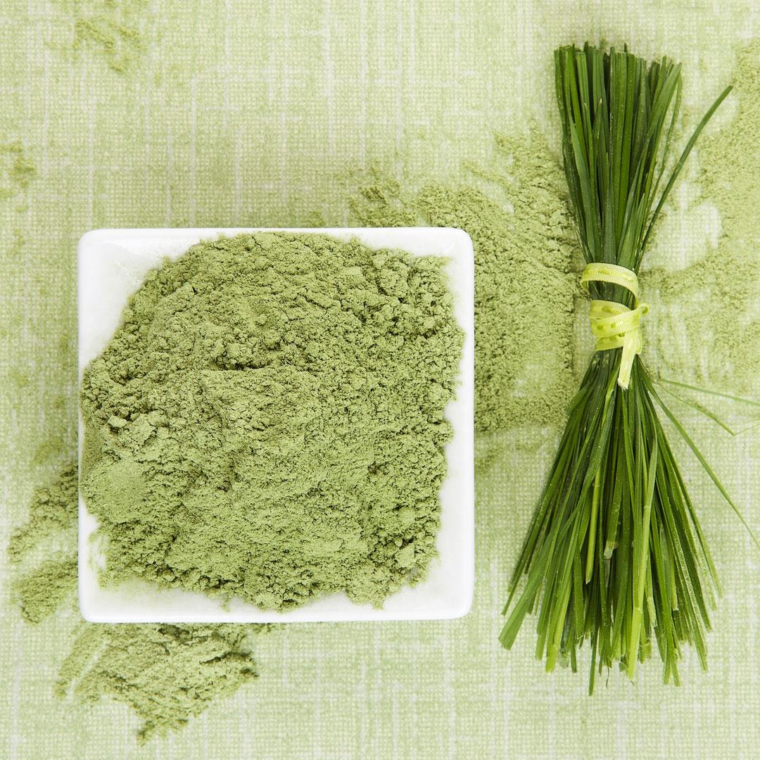 Hierba de trigo ¡Dale un extra de nutrición a tus zumos verdes!